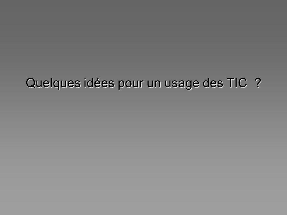 Quelques idées pour un usage des TIC
