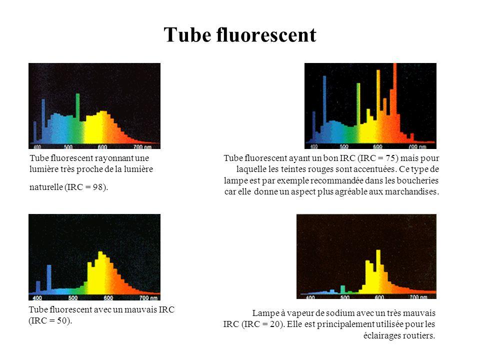 Tube fluorescent Tube fluorescent rayonnant une lumière très proche de la lumière naturelle (IRC = 98).
