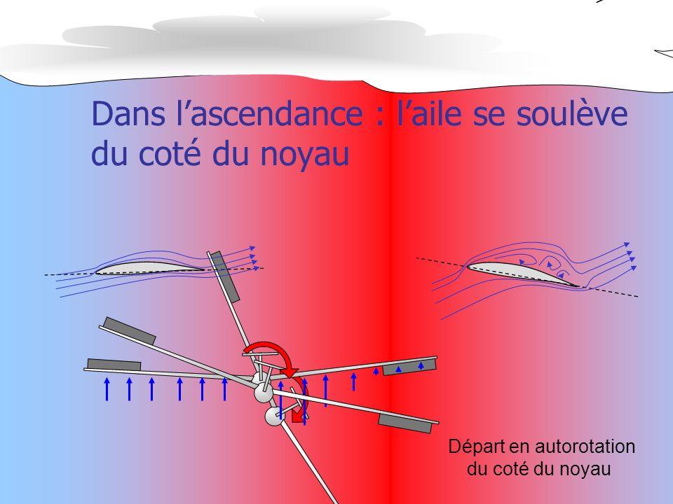 Dans l'ascendance : l'aile se soulève du coté du noyau