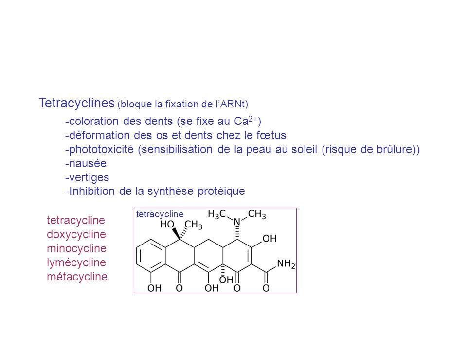 Tetracyclines (bloque la fixation de l'ARNt)