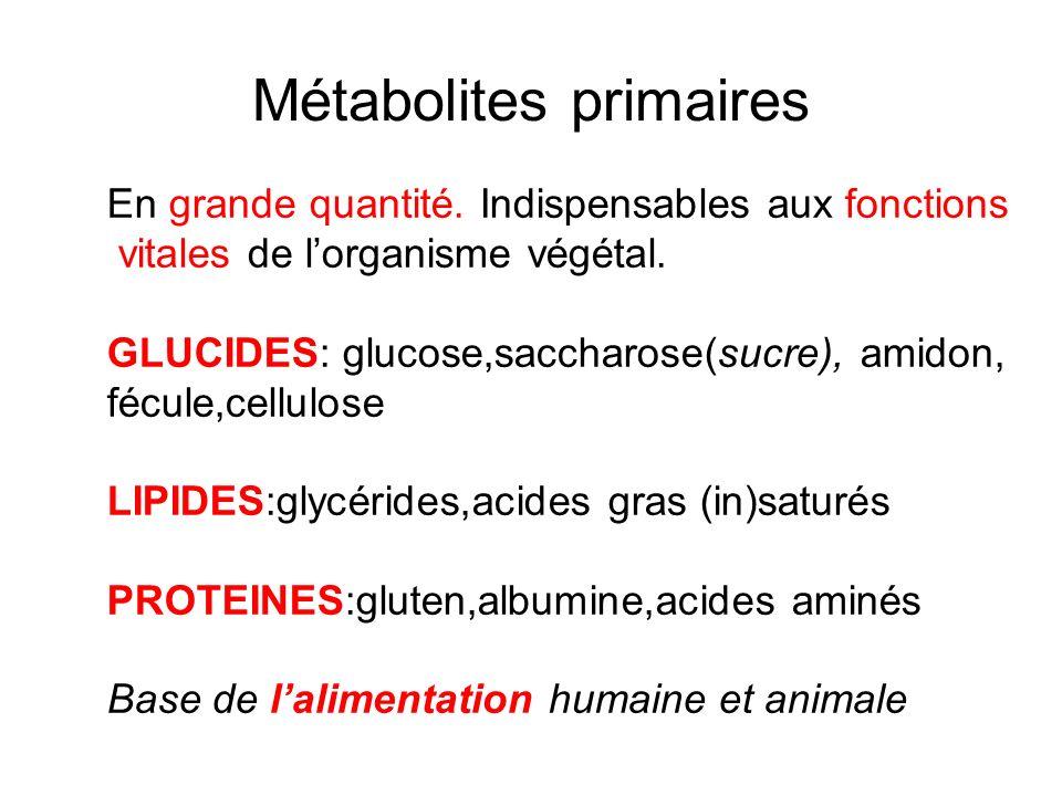 Métabolites primaires
