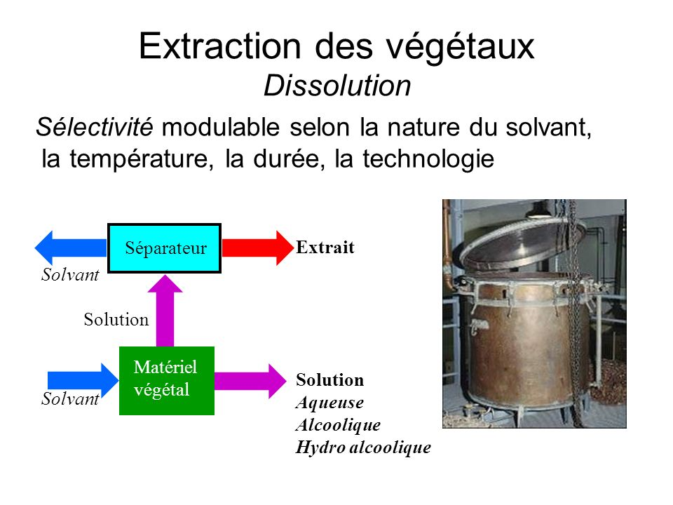 Extraction des végétaux Dissolution