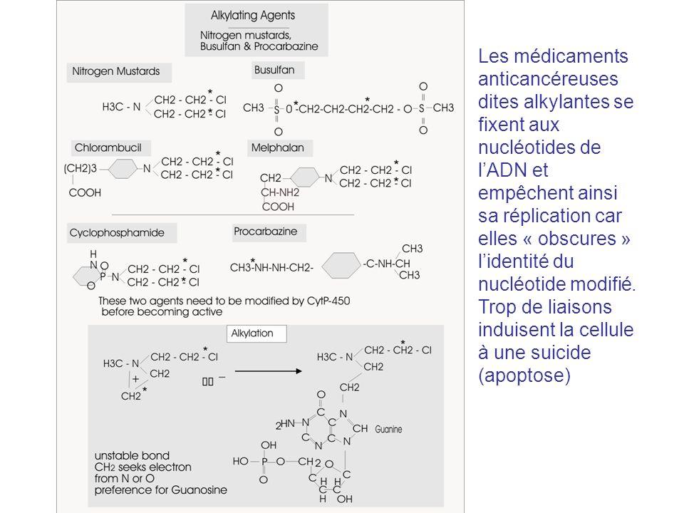 Les médicaments anticancéreuses dites alkylantes se fixent aux nucléotides de l'ADN et empêchent ainsi sa réplication car elles « obscures » l'identité du nucléotide modifié. Trop de liaisons induisent la cellule à une suicide