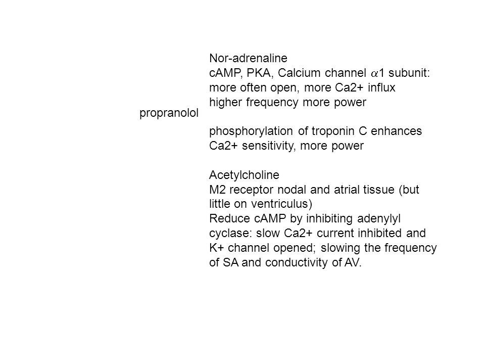 Nor-adrenaline cAMP, PKA, Calcium channel a1 subunit: more often open, more Ca2+ influx. higher frequency more power.