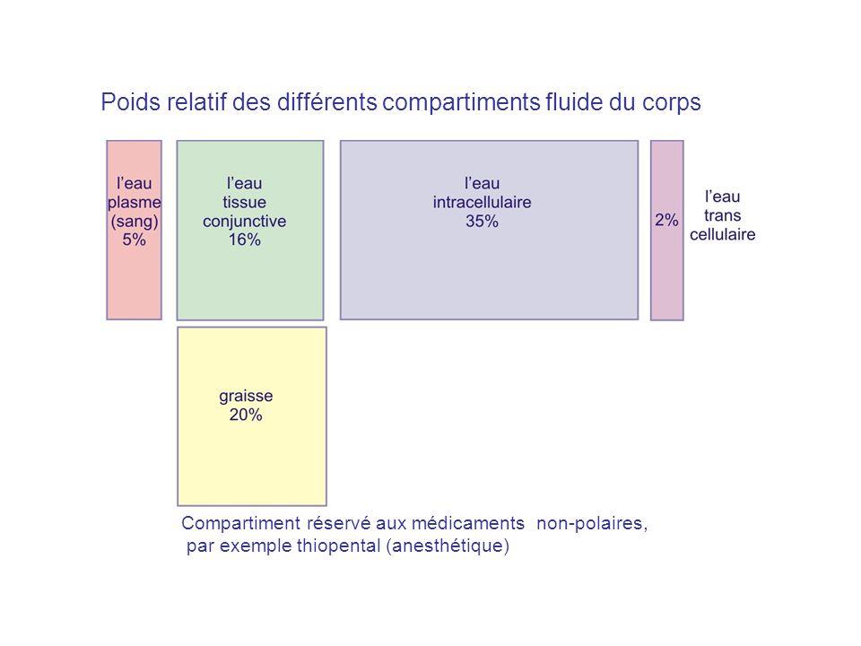 Poids relatif des différents compartiments fluide du corps