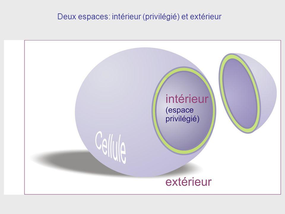 Deux espaces: intérieur (privilégié) et extérieur