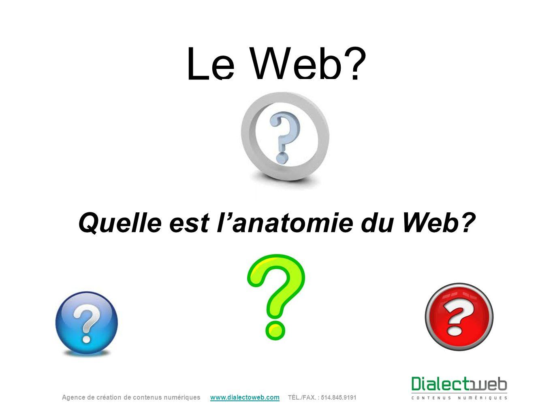 Quelle est l'anatomie du Web