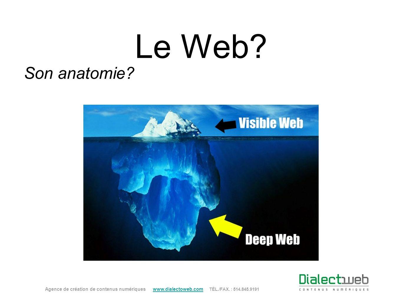 Le Web. Son anatomie.