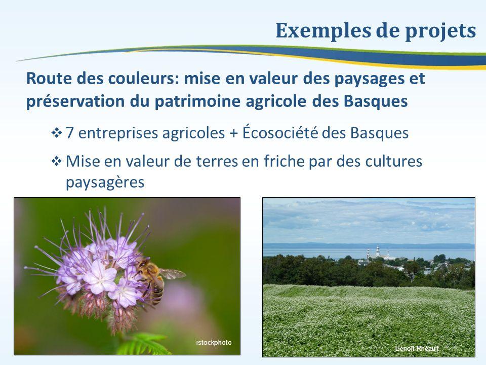 Exemples de projets Route des couleurs: mise en valeur des paysages et préservation du patrimoine agricole des Basques.
