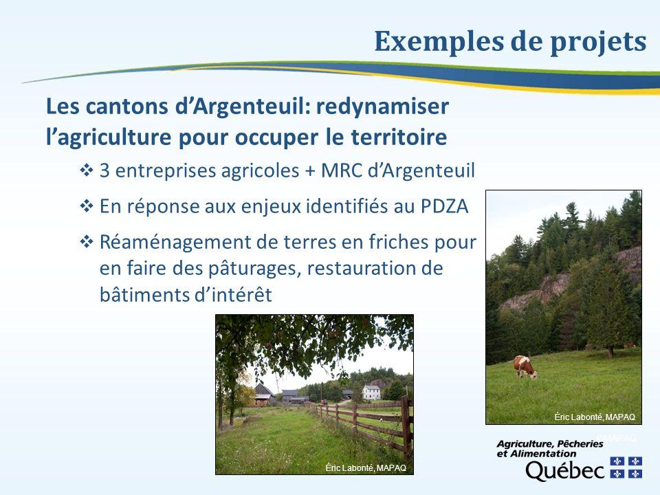 Exemples de projets Les cantons d'Argenteuil: redynamiser l'agriculture pour occuper le territoire.