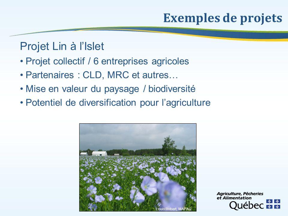 Exemples de projets Projet Lin à l'Islet