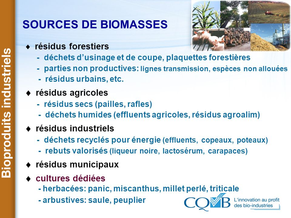 SOURCES DE BIOMASSES résidus agricoles résidus industriels