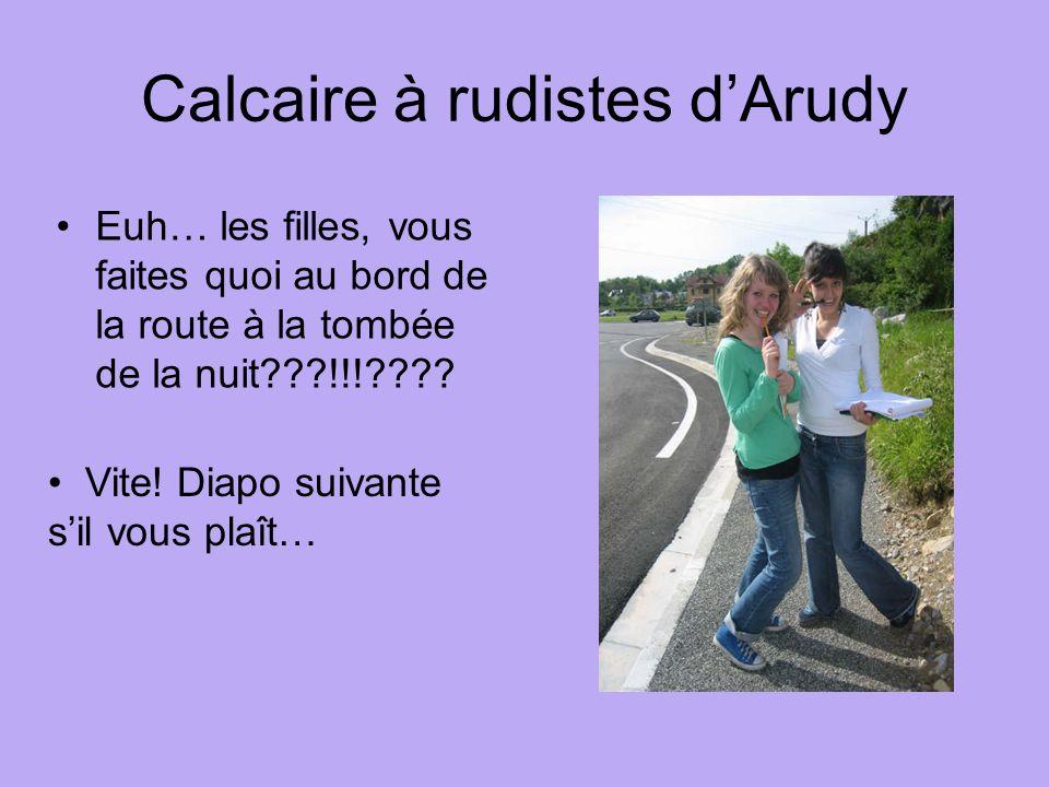 Calcaire à rudistes d'Arudy