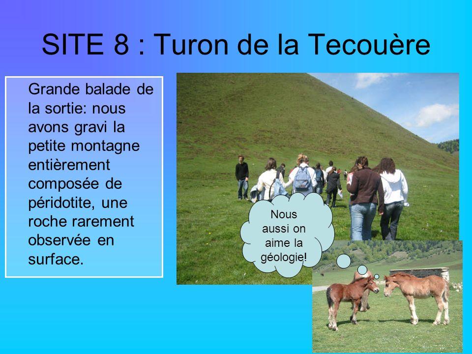 SITE 8 : Turon de la Tecouère