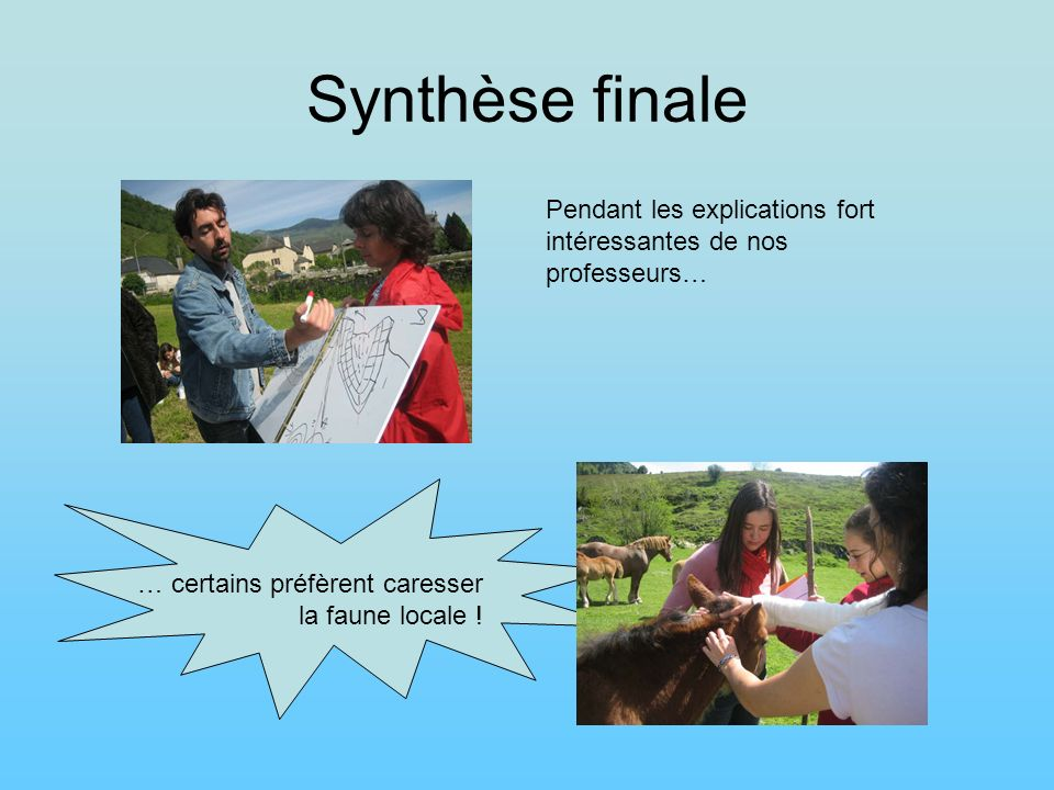 Synthèse finalePendant les explications fort intéressantes de nos professeurs… … certains préfèrent caresser la faune locale !