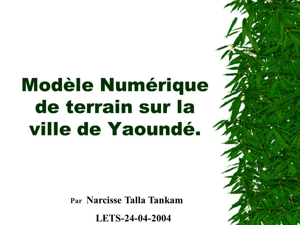 Modèle Numérique de terrain sur la ville de Yaoundé.