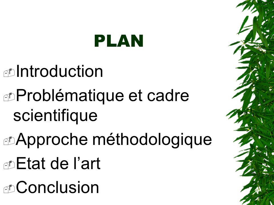 PLAN Introduction. Problématique et cadre scientifique.