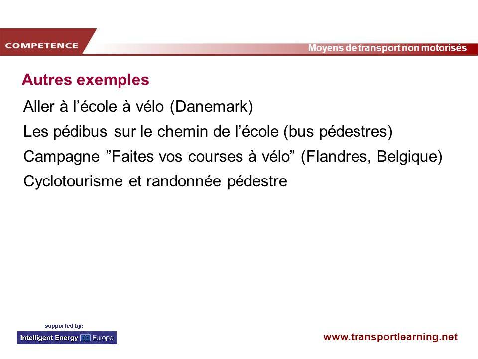 Autres exemples Aller à l'école à vélo (Danemark) Les pédibus sur le chemin de l'école (bus pédestres)