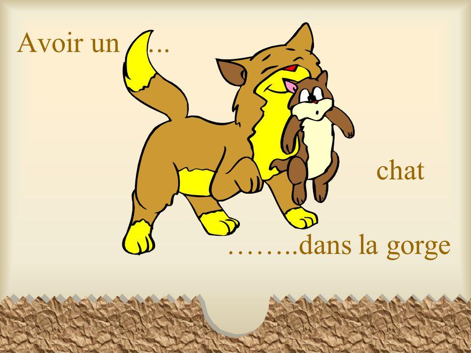 Avoir un ….. chat ……..dans la gorge
