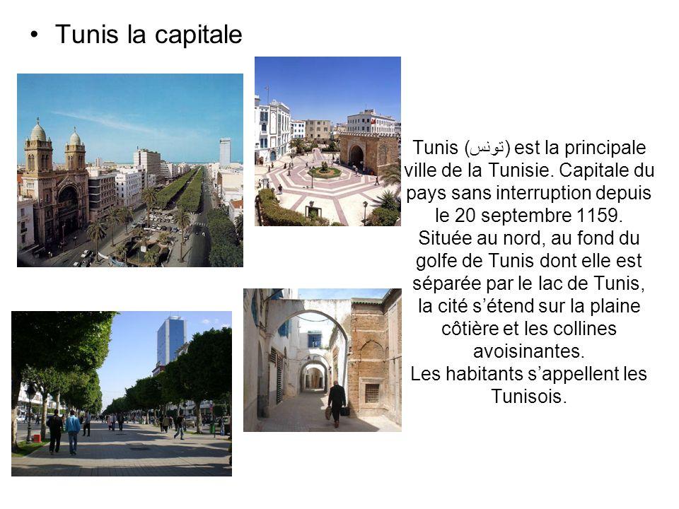 Tunis la capitale
