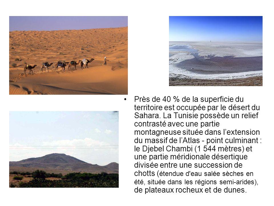 Près de 40 % de la superficie du territoire est occupée par le désert du Sahara.