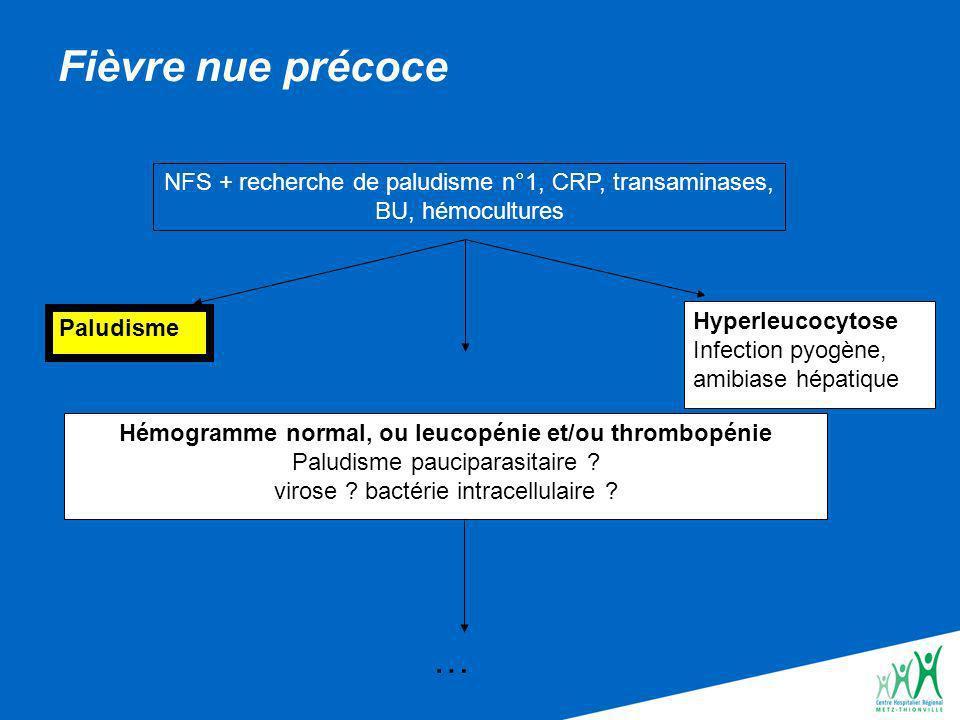 Fièvre nue précoce NFS + recherche de paludisme n°1, CRP, transaminases, BU, hémocultures. Hyperleucocytose.