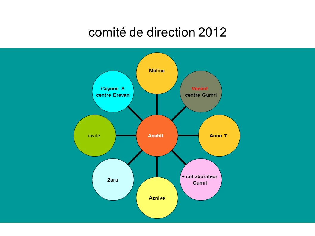 comité de direction 2012