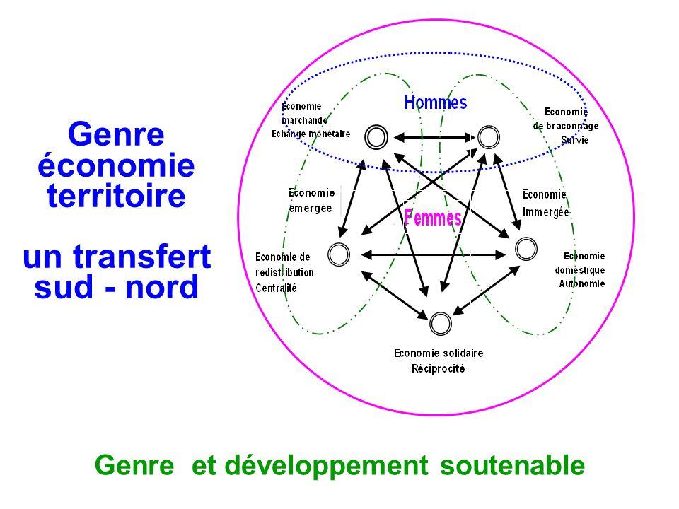 Genre économie territoire un transfert sud - nord
