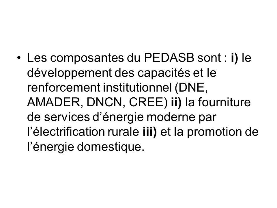 Les composantes du PEDASB sont : i) le développement des capacités et le renforcement institutionnel (DNE, AMADER, DNCN, CREE) ii) la fourniture de services d'énergie moderne par l'électrification rurale iii) et la promotion de l'énergie domestique.