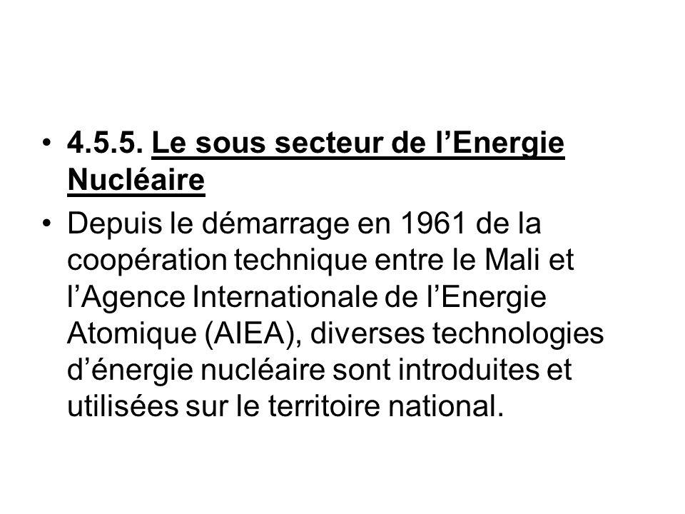 4.5.5. Le sous secteur de l'Energie Nucléaire