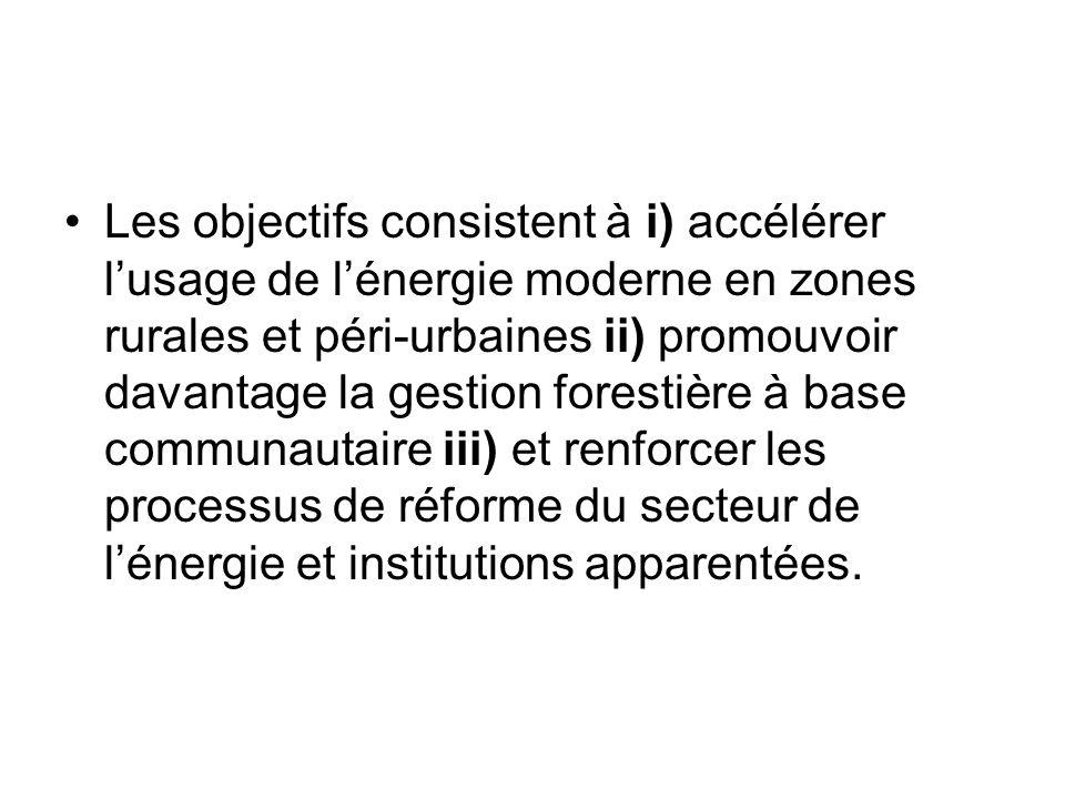 Les objectifs consistent à i) accélérer l'usage de l'énergie moderne en zones rurales et péri-urbaines ii) promouvoir davantage la gestion forestière à base communautaire iii) et renforcer les processus de réforme du secteur de l'énergie et institutions apparentées.