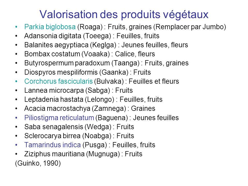 Valorisation des produits végétaux