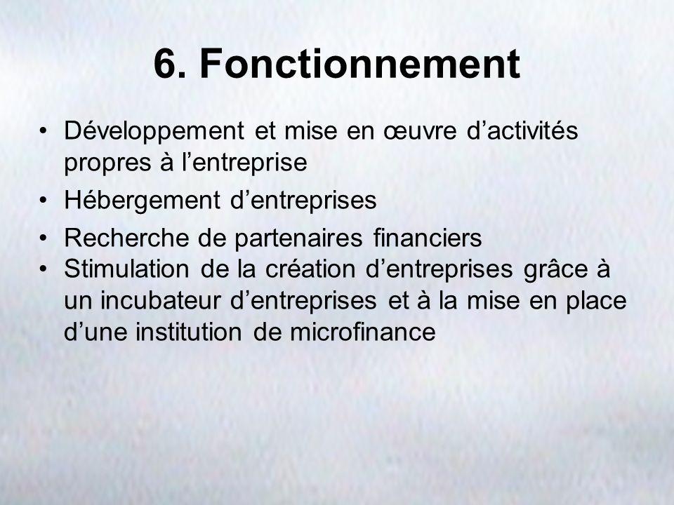 6. Fonctionnement Développement et mise en œuvre d'activités propres à l'entreprise. Hébergement d'entreprises.