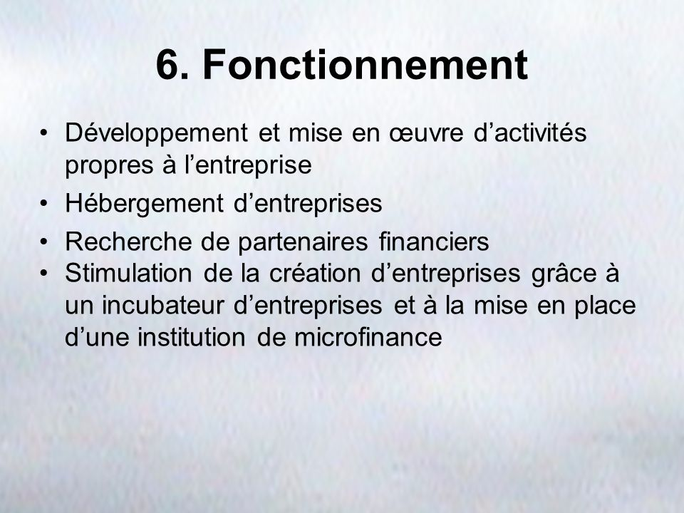 6. FonctionnementDéveloppement et mise en œuvre d'activités propres à l'entreprise. Hébergement d'entreprises.