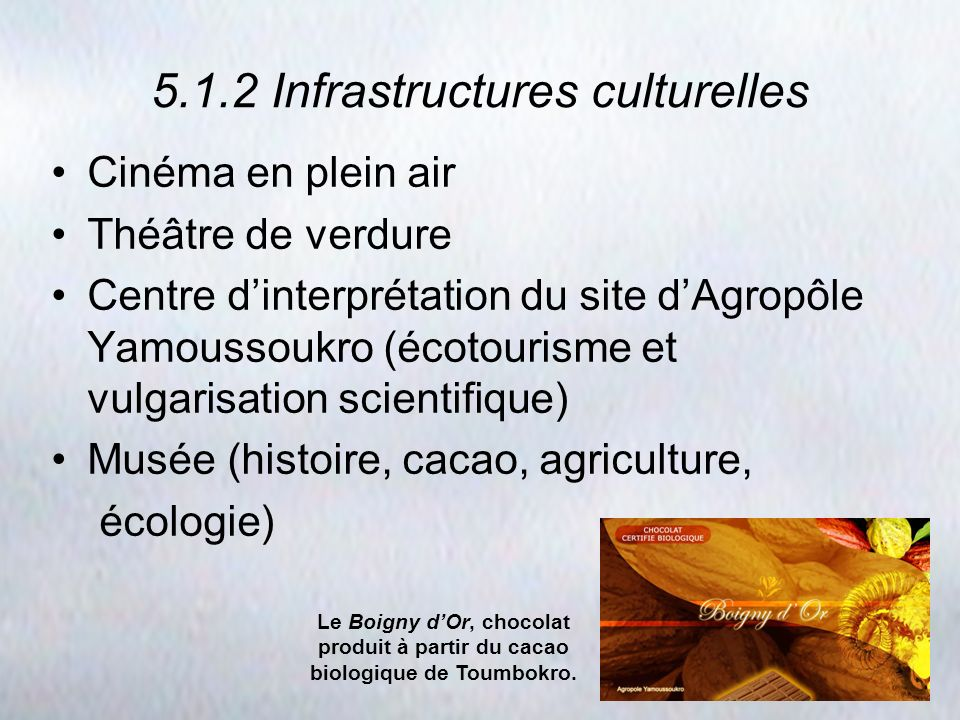 5.1.2 Infrastructures culturelles