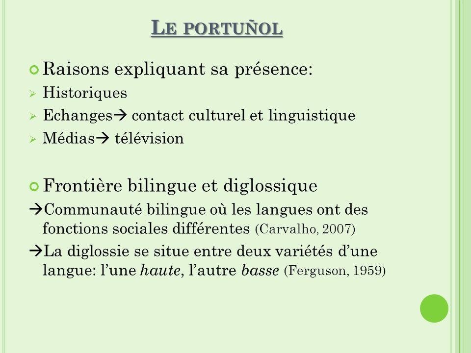 Le portuñol Raisons expliquant sa présence: