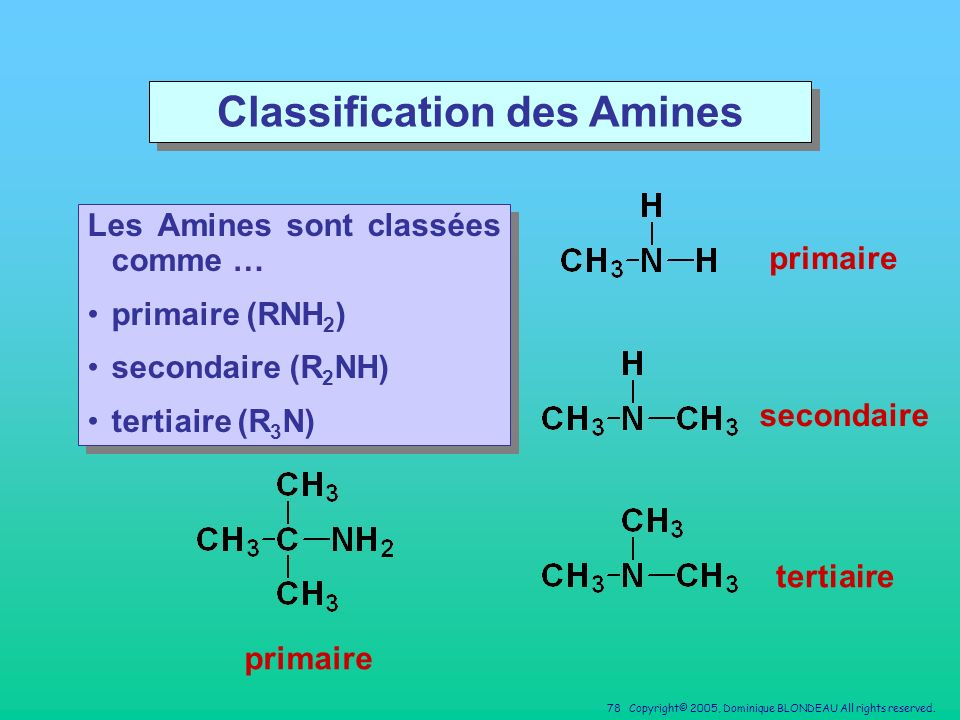 Classification des Amines