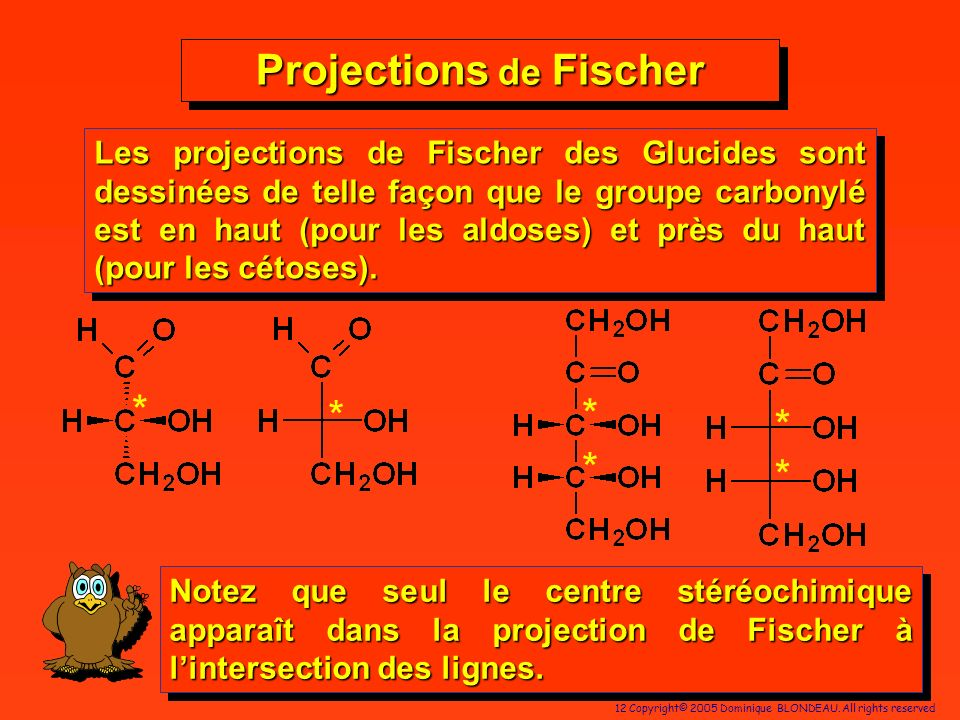 Projections de Fischer