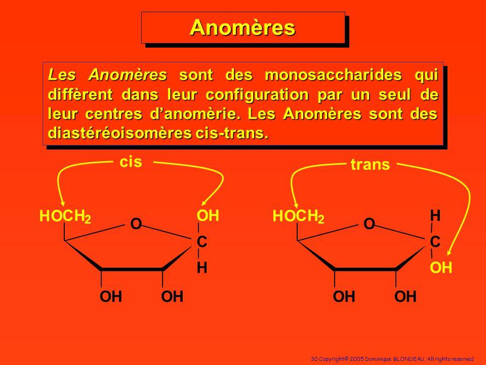 Anomères