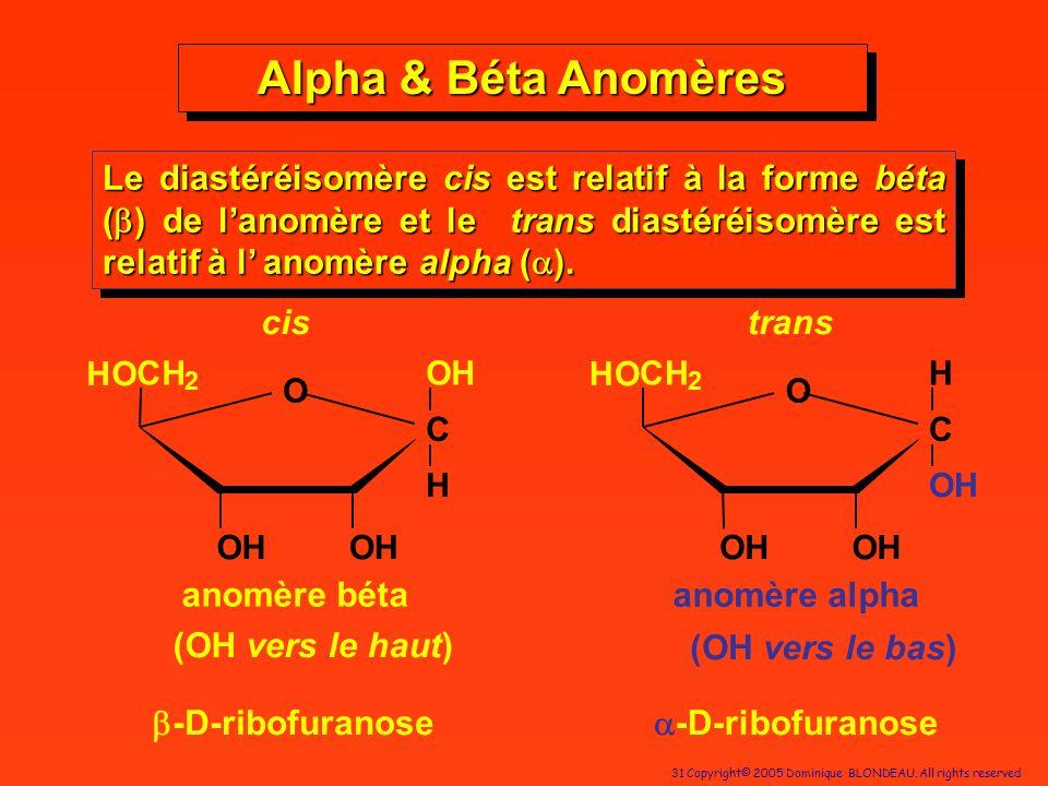 Alpha & Béta Anomères