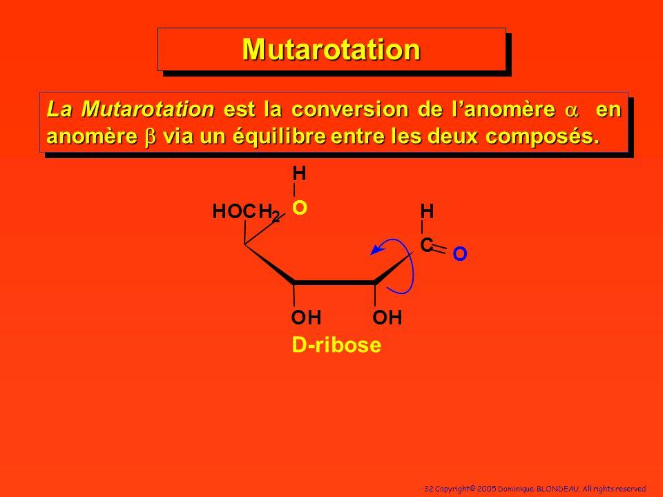 Mutarotation La Mutarotation est la conversion de l'anomère a en anomère b via un équilibre entre les deux composés.