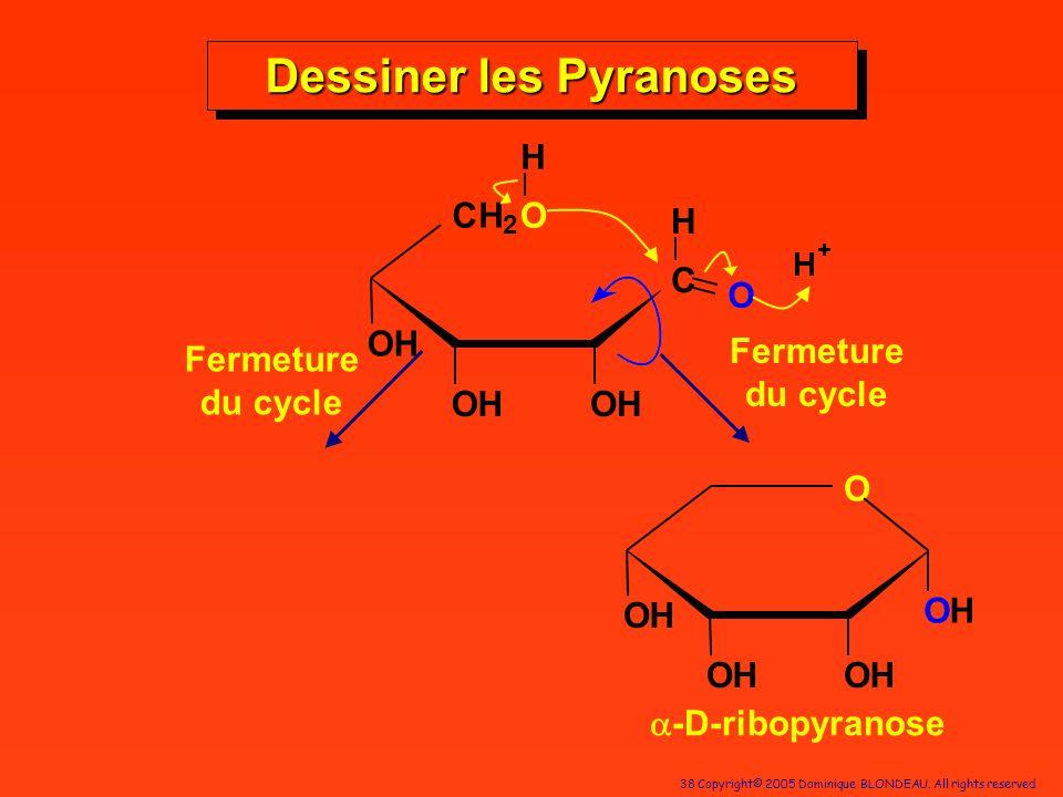 Dessiner les Pyranoses