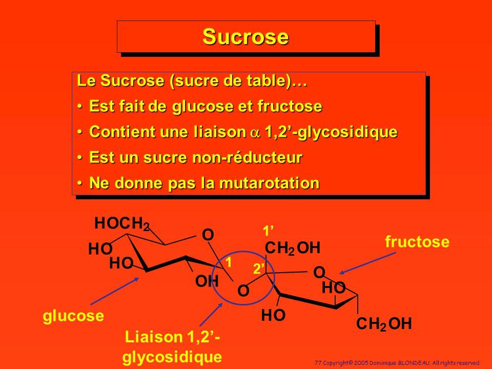 Liaison 1,2'-glycosidique