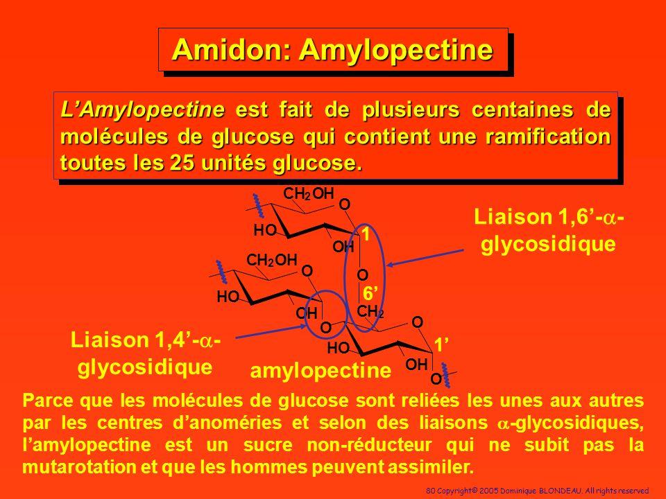 Liaison 1,6'-a-glycosidique Liaison 1,4'-a-glycosidique