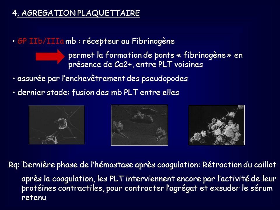 4. AGREGATION PLAQUETTAIRE