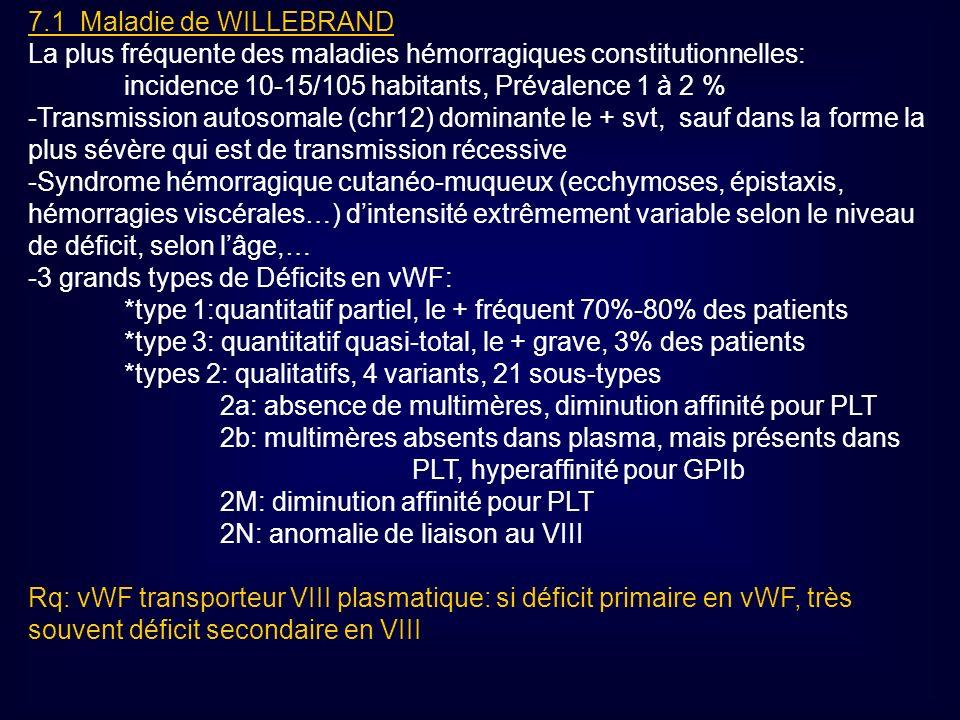 7.1 Maladie de WILLEBRAND La plus fréquente des maladies hémorragiques constitutionnelles: incidence 10-15/105 habitants, Prévalence 1 à 2 %