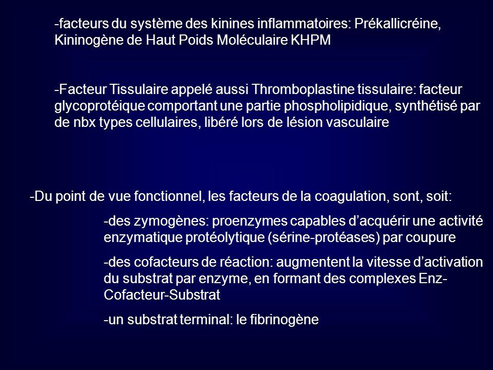 -facteurs du système des kinines inflammatoires: Prékallicréine,