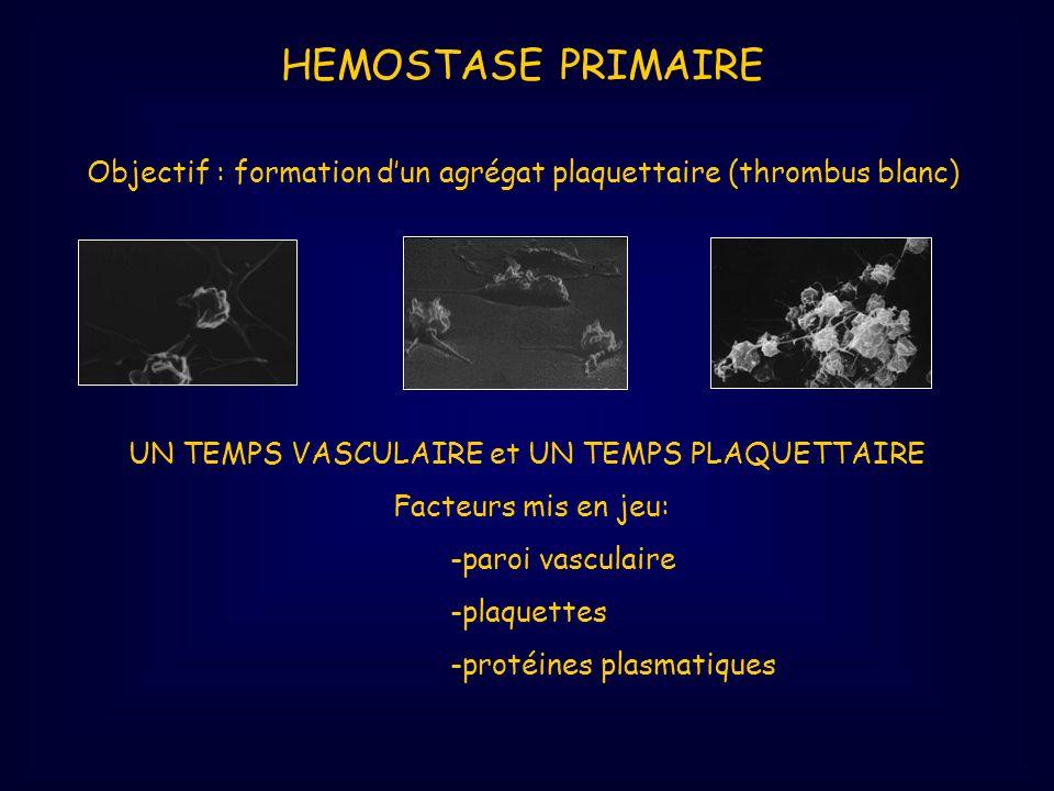 HEMOSTASE PRIMAIRE Objectif : formation d'un agrégat plaquettaire (thrombus blanc) UN TEMPS VASCULAIRE et UN TEMPS PLAQUETTAIRE.