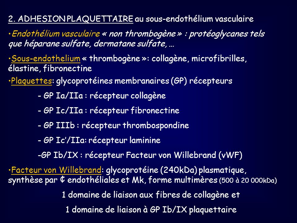 2. ADHESION PLAQUETTAIRE au sous-endothélium vasculaire