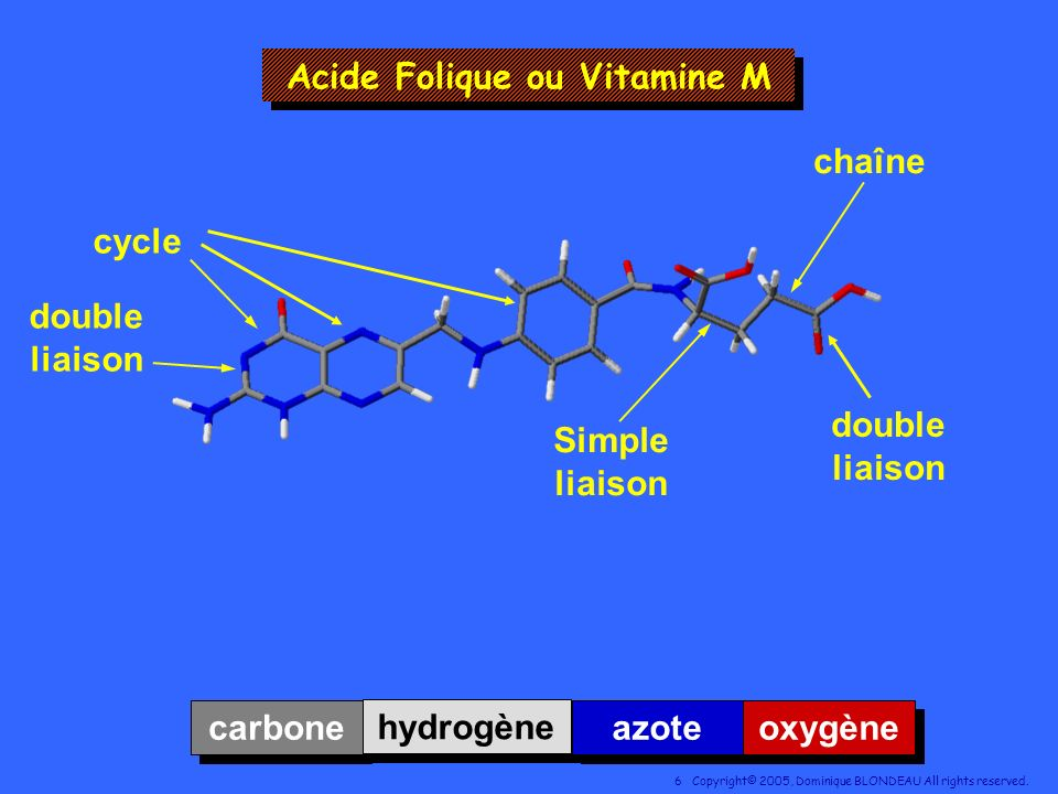 Acide Folique ou Vitamine M